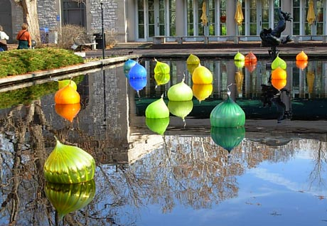 some chihulys (chihulies?) in the water